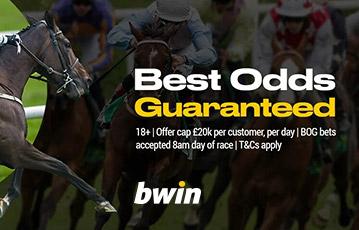 bwin sport odds