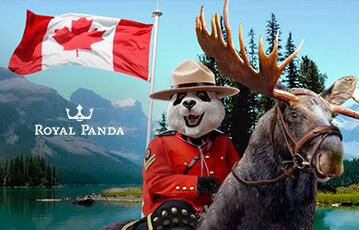 royal panda poker review - pro and contra