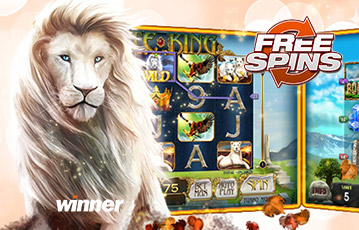 winner-casino casino review